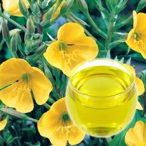A ligetszépe olaj